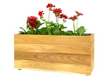 Picture for category Teak Window Planters